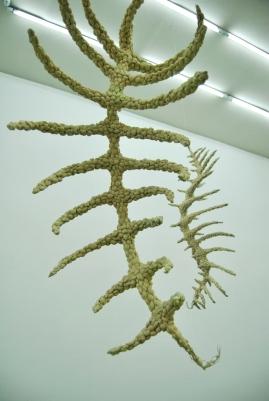 exhibition-detail-1