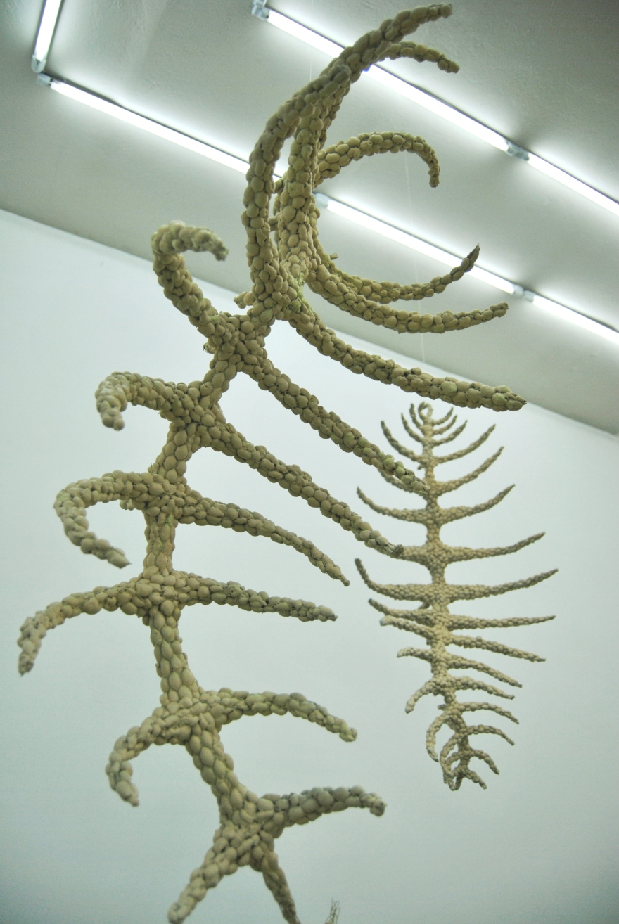 exhibition-detail-2